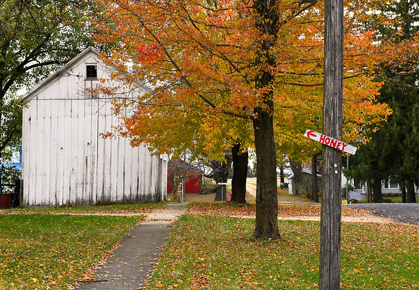 Fall in Dakota, IL