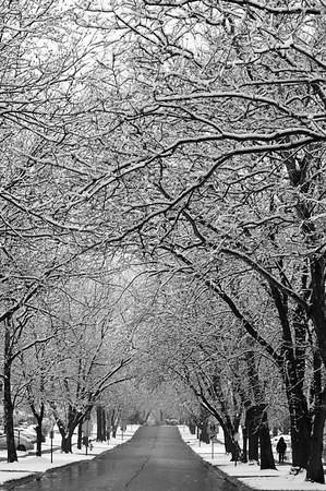 Winter in Glen Ellyn