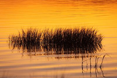 Sunset Shadows San Francisco Bay, CA, US