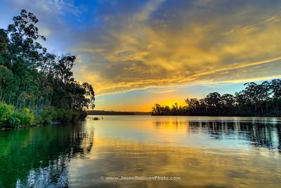 Sunset Grove