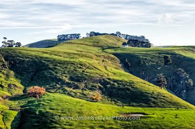 Hillside Farming