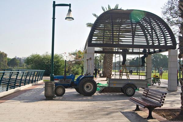 Scenes in the Park