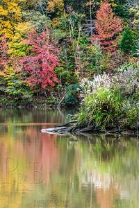 Autumn Reflection, No. 1