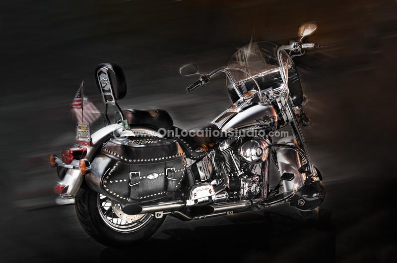 Portrait of a Harley Davidson
