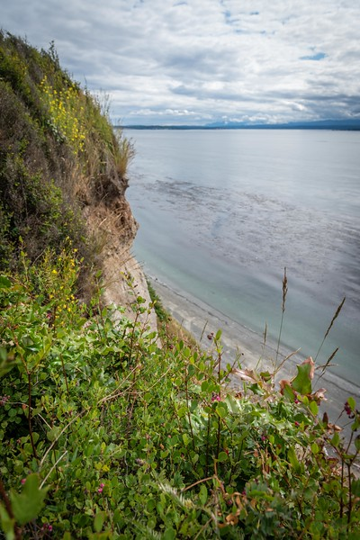 Admiralty Inlet-118