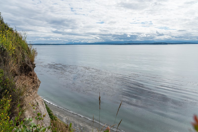 Admiralty Inlet-115