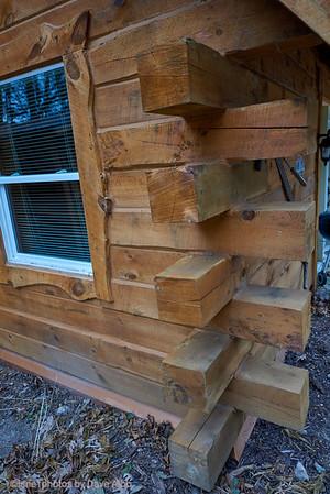 Bonnie's City Cabin