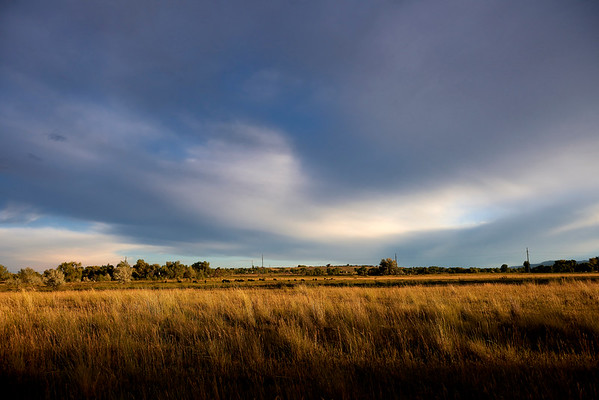 Late Afternoon, Teller Farm Trail