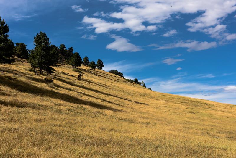 Sanitas ridge