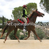 DHRE-5265A Race