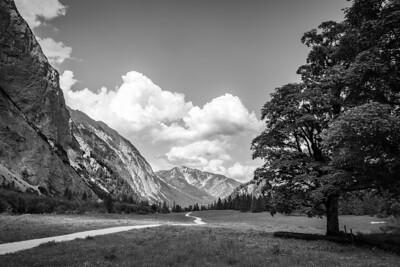 Bei der Gramaialm, westlich von Pertisau, Tirol, Österreich