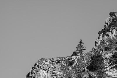 Fels mit Baum vom Pürschlinghaus aus gesehen, Bayern, Deutschland
