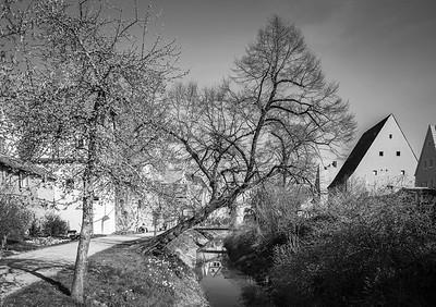 Altwasser der Wörnitz, Donauwörth, Bayern, Deutschland