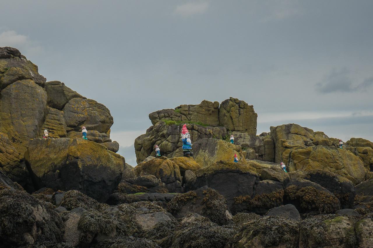 Gnomes on an island near Inchcolm