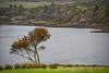 Dunvegan Castle,  Dunvegan Loch, Isle of Skye, Scotland