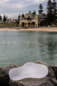 Sculptures By The Sea (22 of 77)