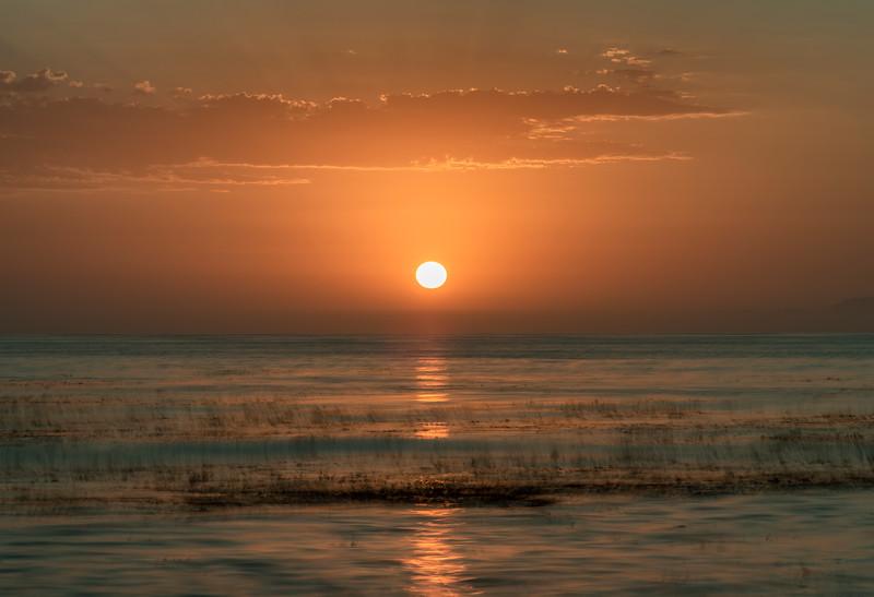 Marshy Sea Sunset