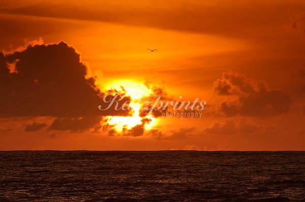 Monterey Bay Sunset