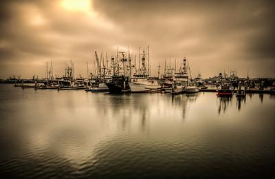 The Embarcadero Marina in San Diego, California near Seaport Village.