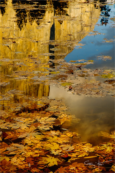 Autumn Reflection, El Capitan, Yosemite