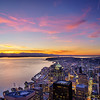 Seattle Pinks
