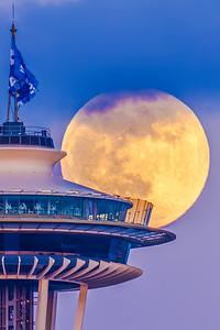 Flower Moon 2020