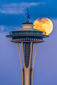 Space Needle Flower Moon