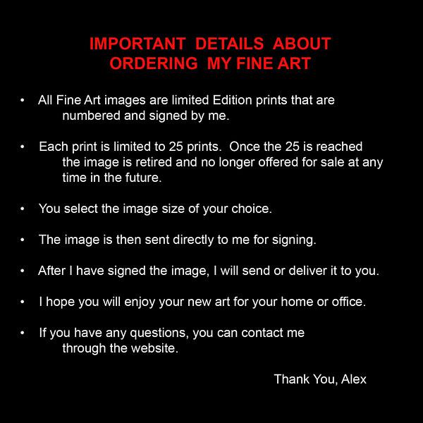 Fine Art Notice