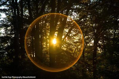 Sun circle, Trail in Skyland Resort, Shenandoah National Park, Virginia