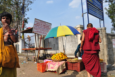 visiting Bylakuppe temple