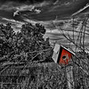 Birdhouse - Elmore, VT
