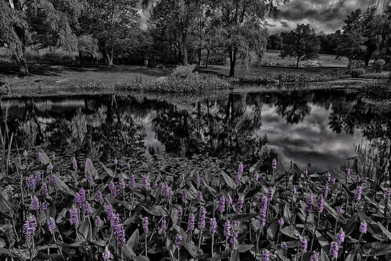 Round Barn Pond - Waitsfield, VT
