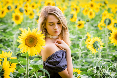 Ellie Sunflower-20
