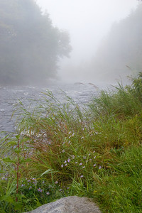 MOOSE RIVER MORNING I (2007)