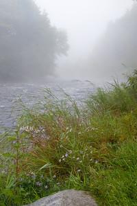 MOOSE RIVER MORNING I (2007)