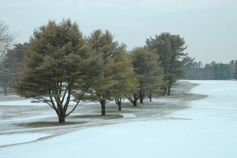 <center>A MORNING DUSTING <i>(2007)</i></center> <p></p>