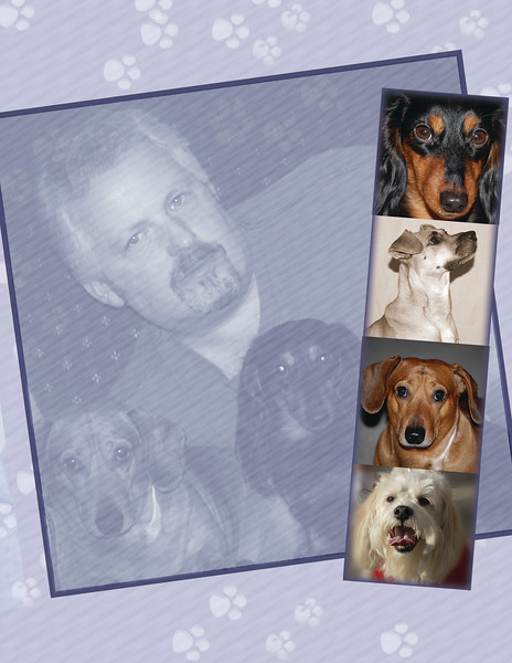 Add-ons & Extras<br /> <br /> ***Don't Forget the 4 Legged Members of your Family!***<br /> Add a Pet to any session for an additional $20.00<br /> <br /> Gallery Proof Book - $95.00<br /> <br /> Lay Flat Wedding Album $500 - 1-10 x 10 Wedding Album, 20 spreads, approx 100 images<br /> <br /> Parent Albums: Same as Brides,1- 6x6 $159.00<br /> <br /> CD's<br /> with personal use print release information<br /> Full session with enhanced images - $125.<br /> Full session raw images - $100.<br /> Up to 5 finished images - $75.<br /> One Image - $25.<br /> Custom Video DVD- W/Package Purchase - $125.<br /> Custom Video DVD- Only - $200.<br /> <br /> Merchandise available through SmugMug. Ask about…<br /> Key Chains<br /> Coffee Mugs<br /> Mouse Pads<br /> T-Shirts<br /> and Much More