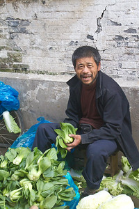 Lettuce Guy