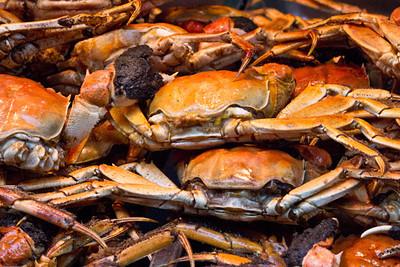 Hairy crabs