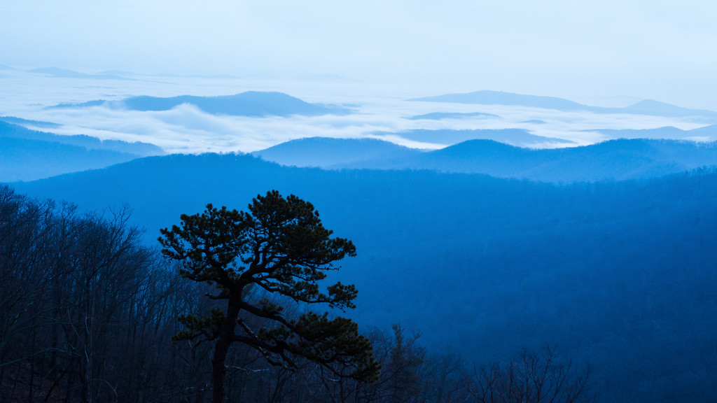 Shenandoah Blue Hour || Shenandoah National Park, VA