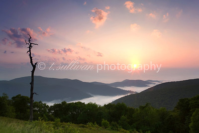 A hazy sunrise at Thorofare overlook in Shenandoah National Park.