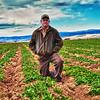 Andy Grant, organic farmer