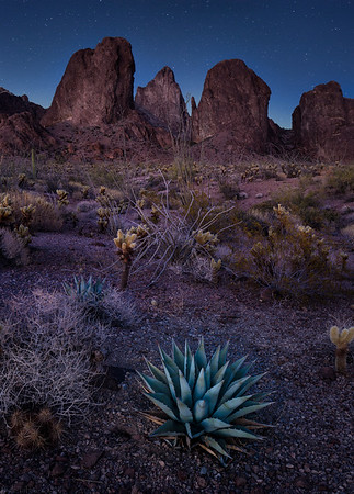 Silence - Kofa, Arizona