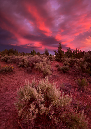 Nature's Fireworks - Terrebonne, Oregon