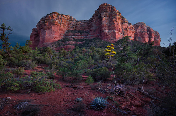 End of Times - Sedona, Arizona