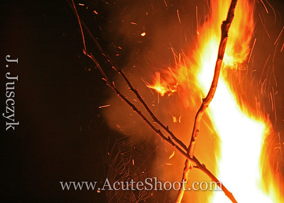 Jaimie took this photo one evening in September 2008. A spider had woven a web in the bonfire pile.