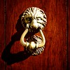 Taormina Lion
