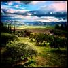 Mineo Landscape