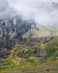 Snow and fall aspens, McGee Creek Canyon, John Muir Wilderness, California, September 2014.