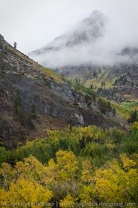 Misty mountain over fall aspens, McGee Creek Canyon, California, September 2014.